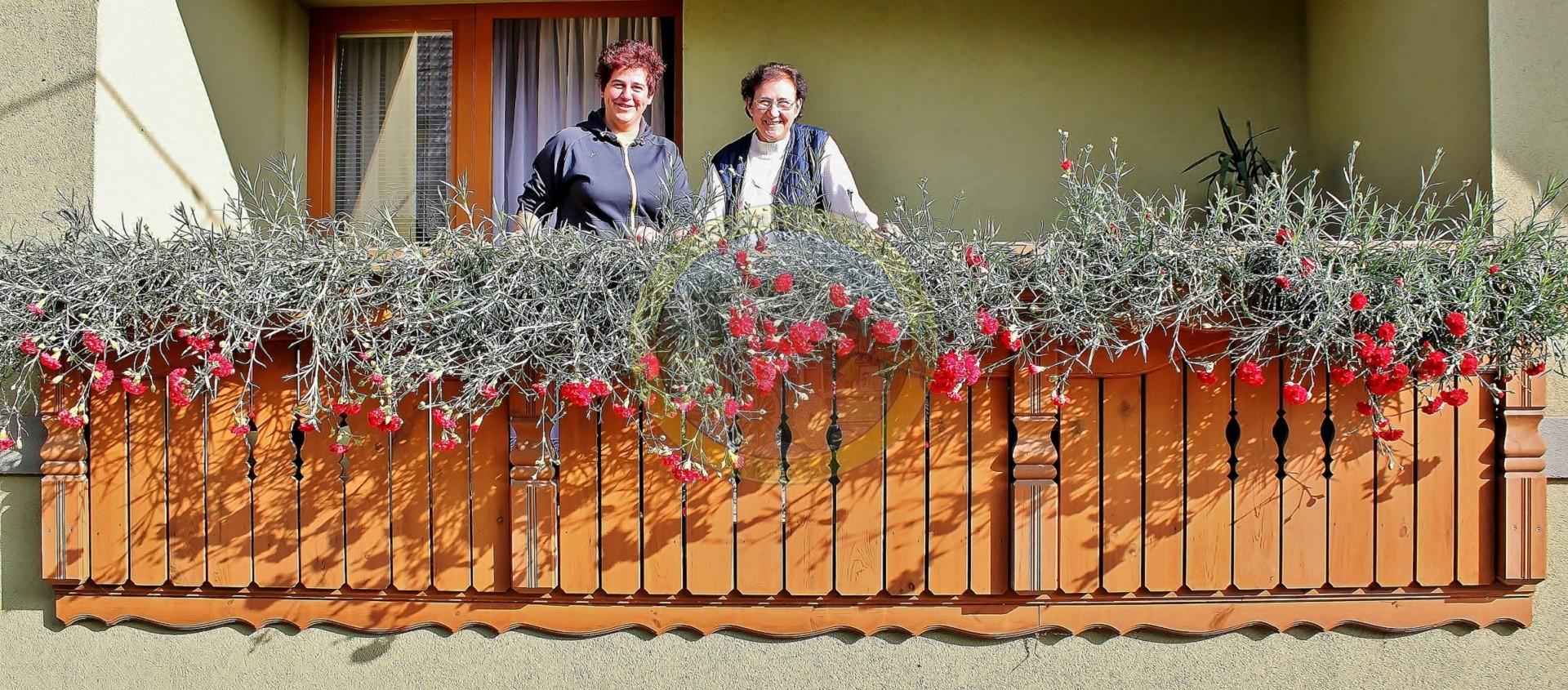 Družina Kleindienst nima nageljnov le doma, pač pa tudi na planini Dolga njiva nad Jelendolom, ob slovensko avstrijski meji. Gospa Mateja ugotavlja, da gorenjski nageljni bolje uspevajo na planini,saj je tam manj vroče, okolje pa je manj onesnaženo. Kleindienstovim je na letošnjem srečanju delavcev gorenjskih turističnih društev v Poljanah nad Škofjo Loko, v začetku oktobra podelila priznanje za gorenjske nageljne tudi Gorenjska turistična